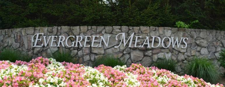 Homes for Sale in Evergreen Meadows