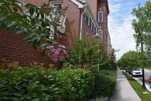 Potomac Yard Townhomes