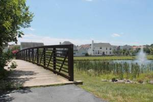 Homes for Sale in Tavistock Farms