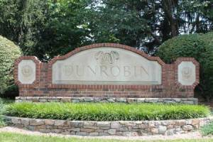Homes for Sale in Dunrobin