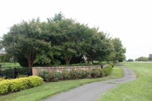 Homes for Sale in Wright Farm