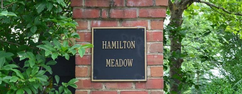 Hamilton Meadow