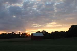Farm in Lothian, Maryland