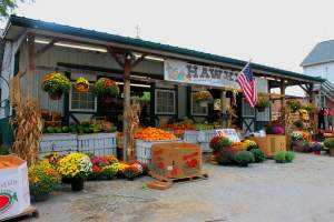 Hawkins Produce in Kensington, Maryland