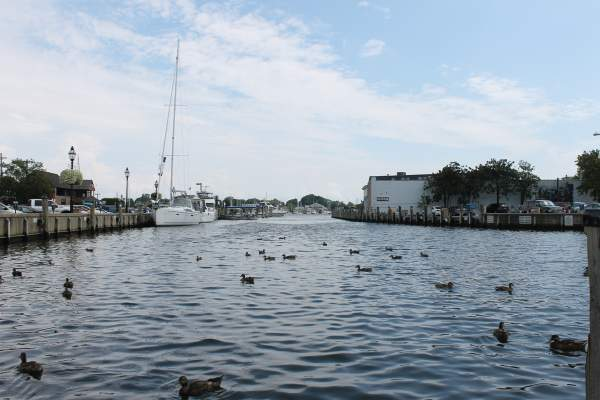Annapolis Harbor in Anne Arundel County, Maryland.