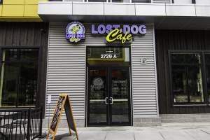 Lost Dog Cafe in Merrfield, Virginia.