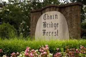 Homes for Sale in Chain Bridge Forest